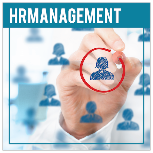 Human Resource Management simulation